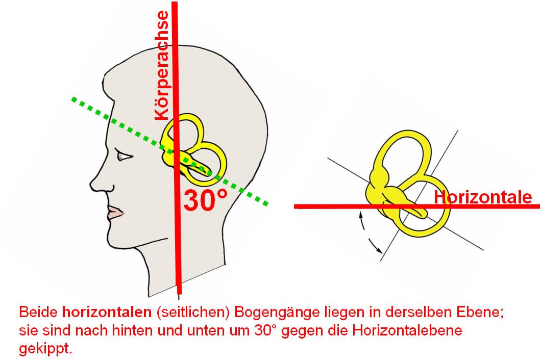 Medizinische Fakultät der Technischen Universität München Klinik für ...